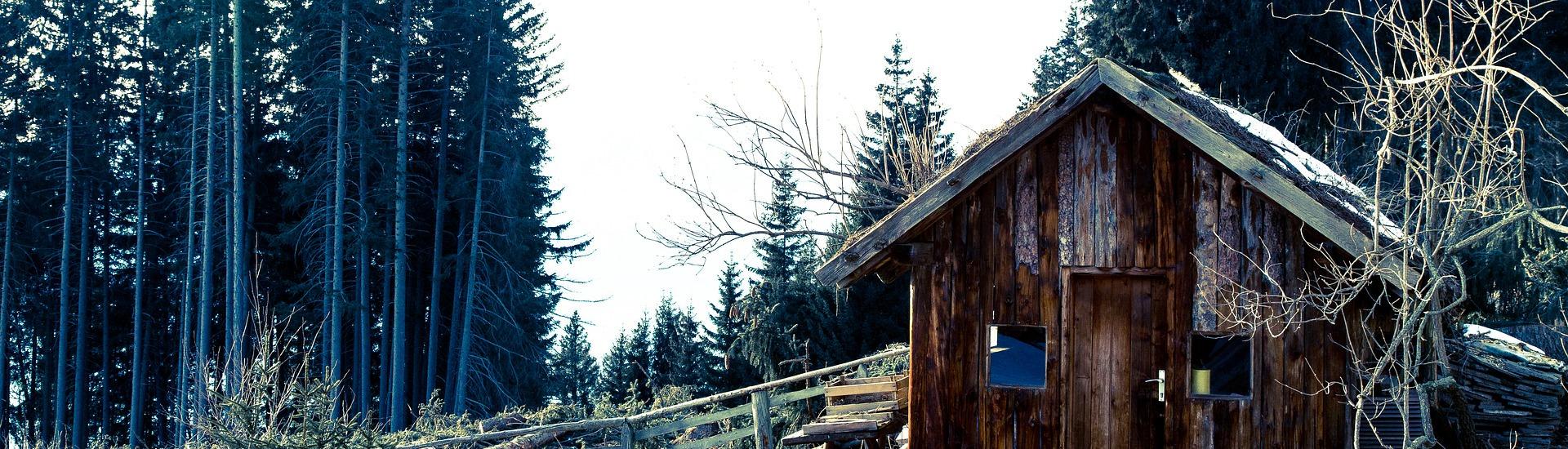 wood-1629185_1920_550